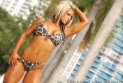 NXT Kaitlyn/Celeste Bonin: Animal Print Bikini Shoot (x9 Pics)